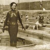 fanghi anni 40