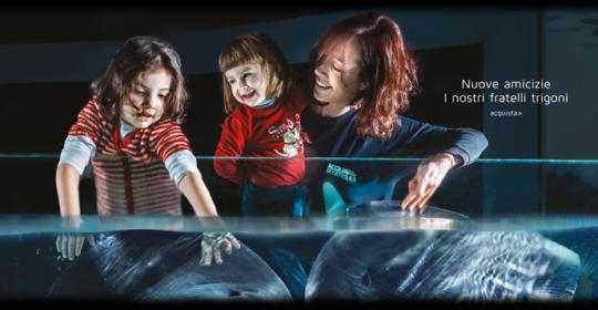 Se li porti alle Terme, i bambini entrano gratis agli Acquari di Cattolica e di Genova